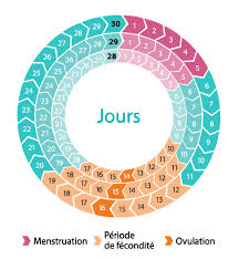 sant perturbation du cycle menstruel chez la femme les. Black Bedroom Furniture Sets. Home Design Ideas
